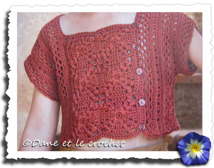 Dane-et-le-Crochet-le-top.jpg