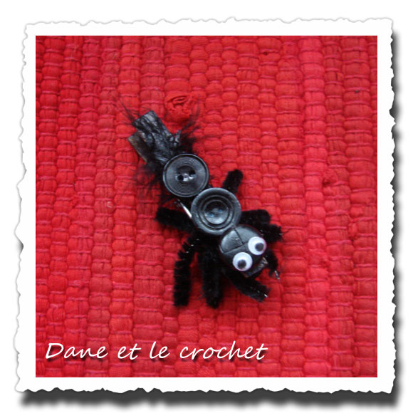 dane-et-le-crochet-araignee-photo-muse.jpg
